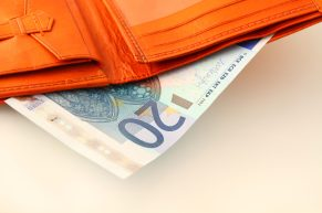 twenty euro wallet